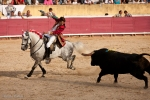 Portuguese Bullfighting, in Santarem, Portugal