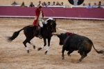 Portuguese bullfighting in Santarem, Portugal, Francisco Pahla on a Lusitano