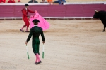 Portuguese bullfighting in Santarem, Portugal