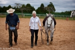 Great fun with working equitation at the Universidade de Cavalo, with Aluisio, Trish, and a super little Criollo.